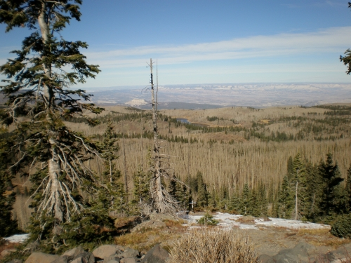 From the Slopes of Grand Mesa