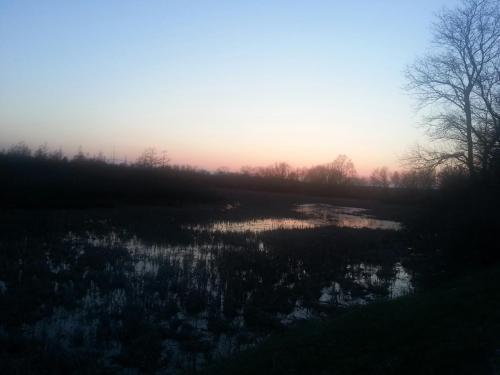 early spring dusk