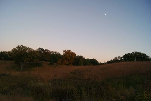Morning Moon and Hills