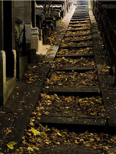 Père Lachaise Cemetery November 15, 2009