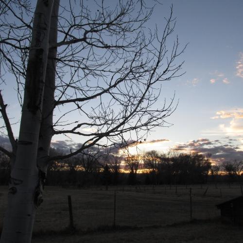 montrose sunset
